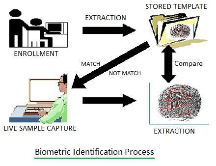 Biometric Identification Process