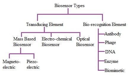 Biosensor types
