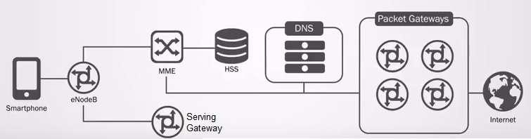 DNS in LTE