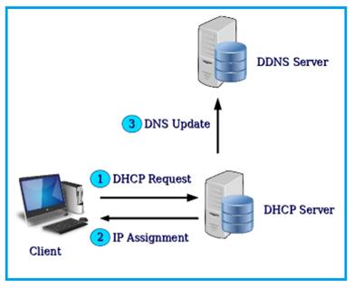Dynamic DNS network