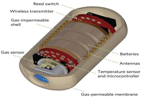 Electronic Pill