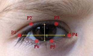 Eye Aspect Ratio