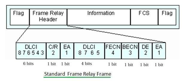 Standard Frame Relay Frame