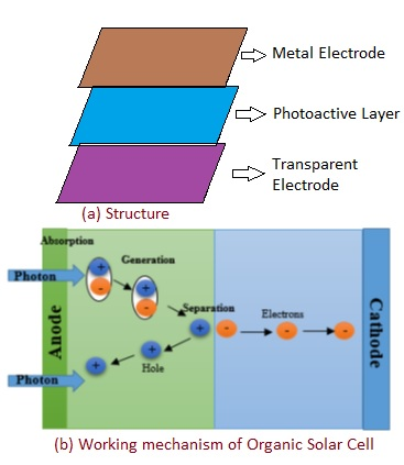 Organic Solar Cell structure and working principle