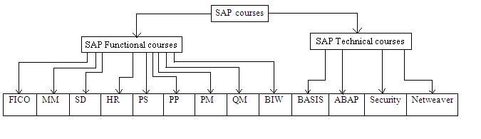 SAP basics | SAP Courses | SAP training institutes