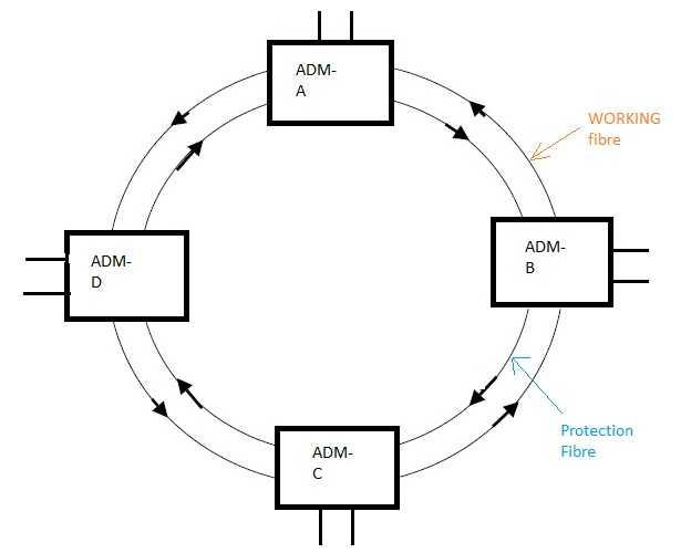SDH network fig2