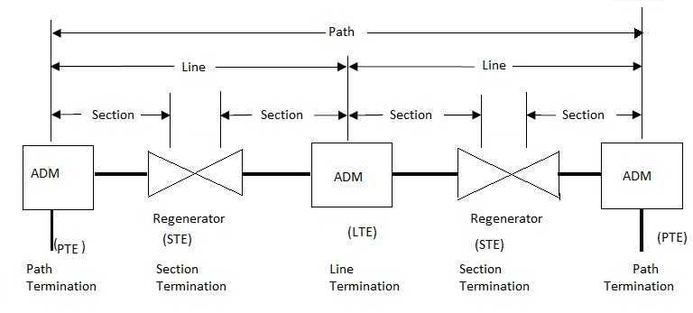 SDH network terminologies