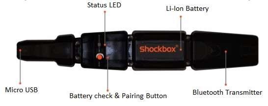 Shockbox sensor