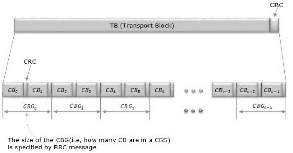 TBS vs CBG