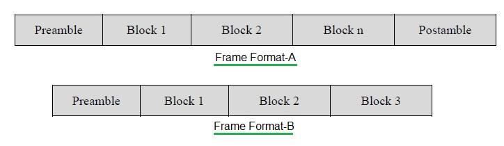 Wireless M-Bus Frame formats