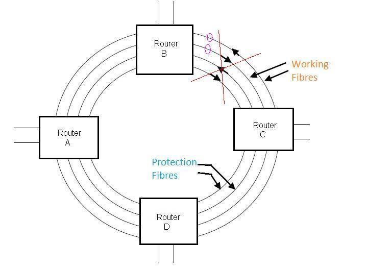 bidirectional ring protection