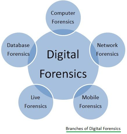 digital forensics branches