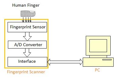 fingerprint sensor used in fingerprint scanner