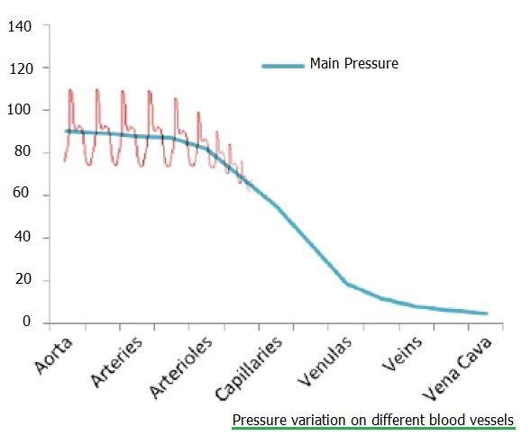 pressure changes on blood vessels
